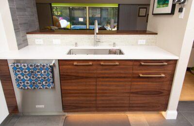 contemporary-kitchen-remodeler