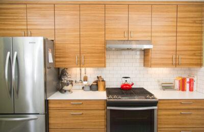 zebrawood-modern-design-gainesville-florida